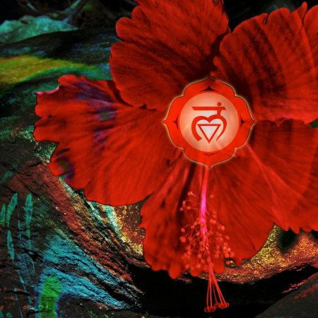 Chakra Activation Workshop Series – Day 4 – Base Chakra, Root Chakra, Muladhara